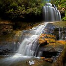 Lyrebird Glen Falls. by Andrew Bosman
