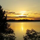 Green Sunset by Bob Hardy