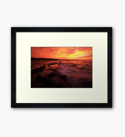 under golden light Framed Print
