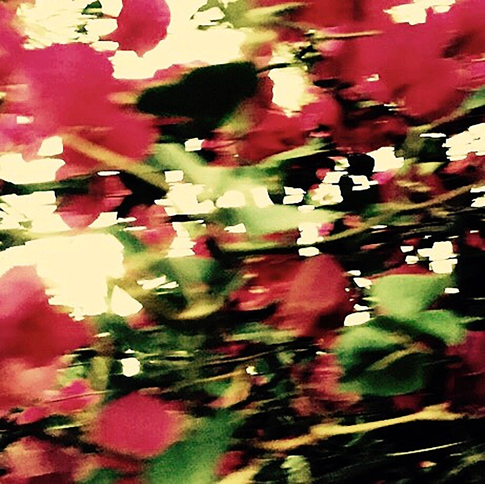 flowers 1327 by MAGDALENE CARMEN