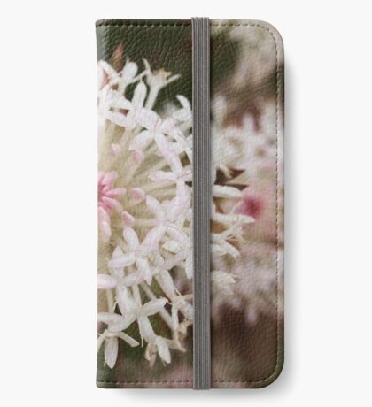 Pimelea spectabilis (4) iPhone Wallet