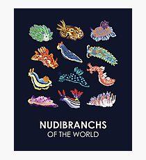 Nudie Cuties Photographic Print