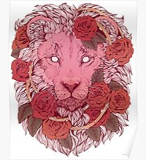 Lion of Roses Poster