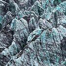 Fox Glacier 5 by Alex Preiss
