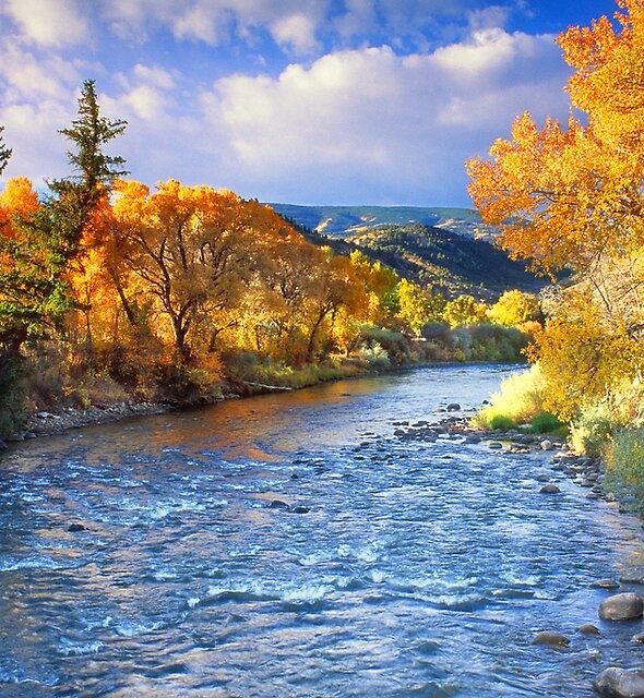 Eagle River by Steve  Taylor