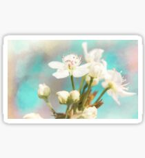 Fruit Blossom Painting Sticker