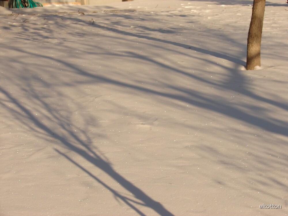 Long Shadows by eltotton