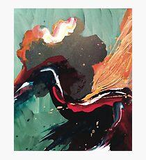 Hummingbird nectar Photographic Print