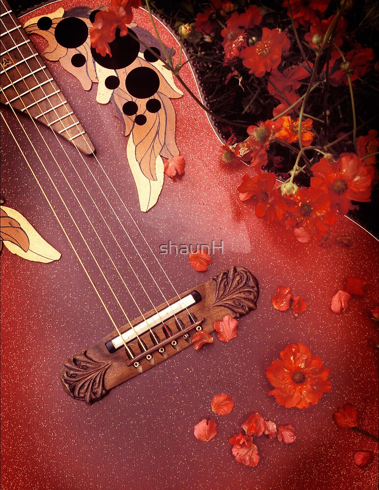 Red Guitar by shaunH