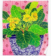 Pretty Primulas Poster