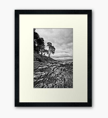 Rocks & Pools Framed Print