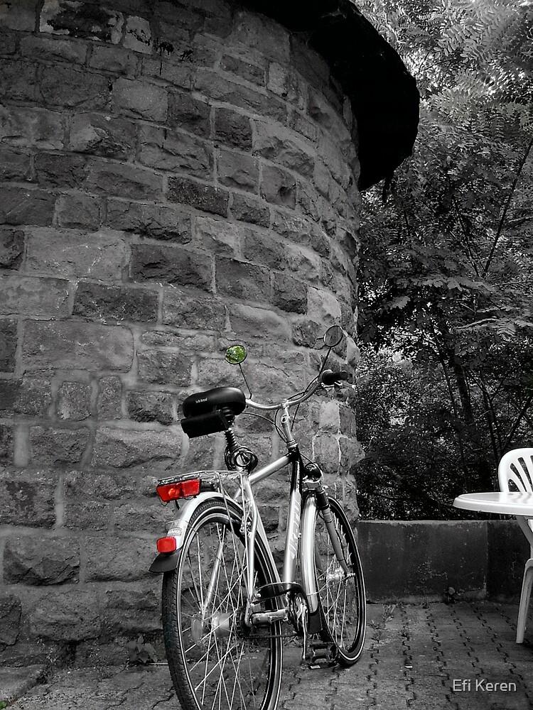 Bicycle by Efi Keren