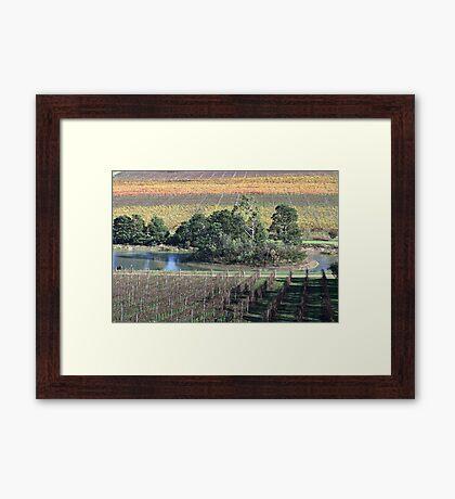 Beautiful Healesville Victoria Australia Framed Print