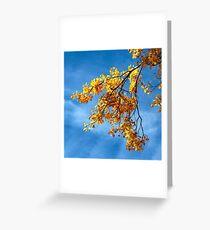 Poplar Leaves in Autumn Greeting Card