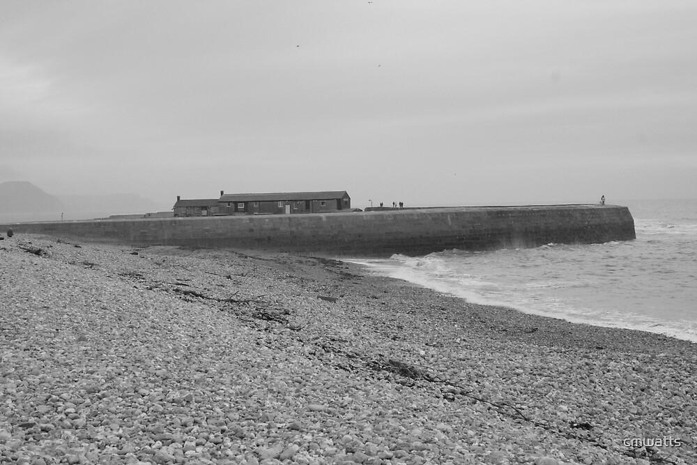 Lyme Regis by cmwatts