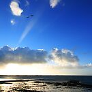 Morning has broken by Nicholas Averre