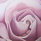 the rose by terezadelpilar ~ art & architecture