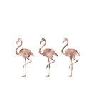 Rose gold flamingo dance by peggieprints