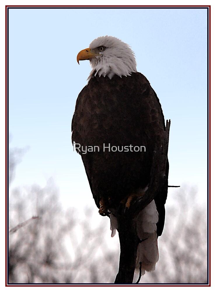 Symbol of Freedom by Ryan Houston
