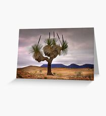 1445 The Grass Tree Greeting Card