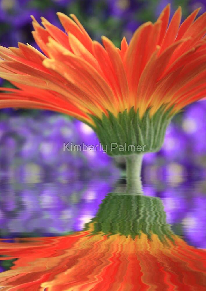 Upside down or right side up by Kimberly Palmer