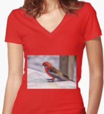 Crimson Rosella, NSW Australia Women's Fitted V-Neck T-Shirt