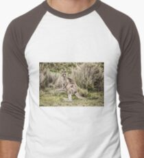 Eastern grey kangaroo Men's Baseball ¾ T-Shirt