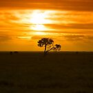 South Australian Sunset by LisaRoberts