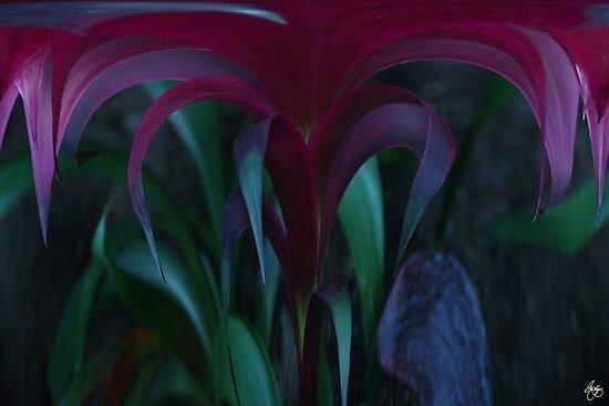 Velvet Rain   by Wayne King