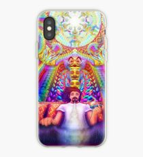 The D33MST3R iPhone Case