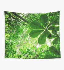 West Coast: Rainforest Radiance Wall Tapestry