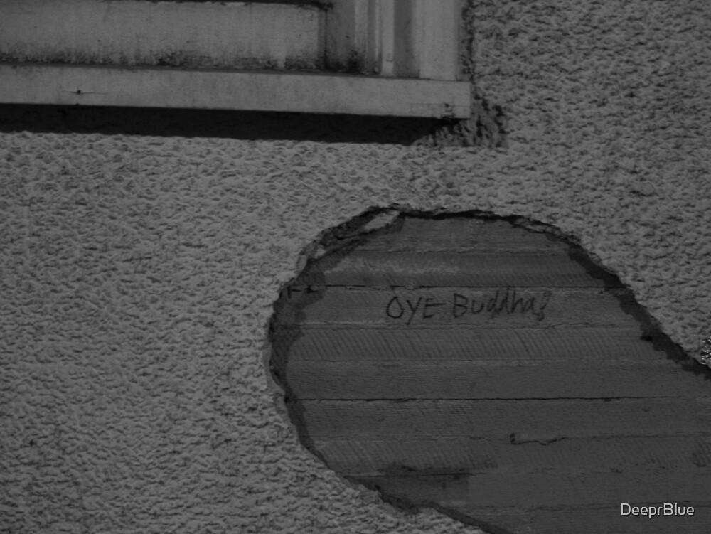 """Words in a Hole 2 : """"Oye Buddha!"""" by DeeprBlue"""