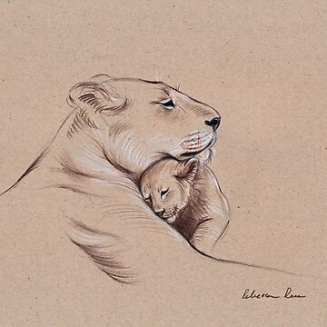 """A Mother's Pride"" Lioness and cub original pencil drawing. by tranquilwaters"