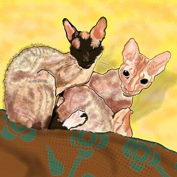 Tiger and George - the Cornish Rex Cats by melasdesign