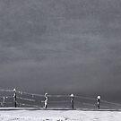 A fence and it's winter by Kurt  Tutschek