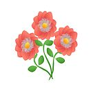 Peach colored  flowers on white background by ikshvaku