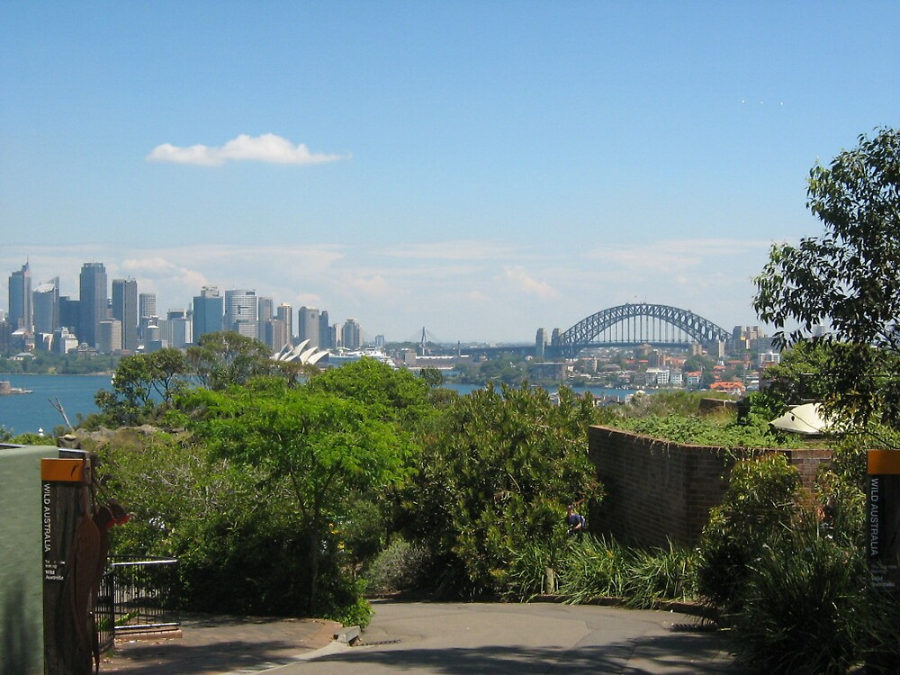 Sydney  by Kelly  Fitzpatrick