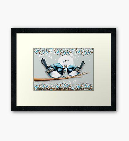 Blue Wrens Framed Print