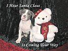 I Hear Santa Claus by Ginny York