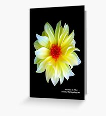 YELLOW DAHLIA Greeting Card