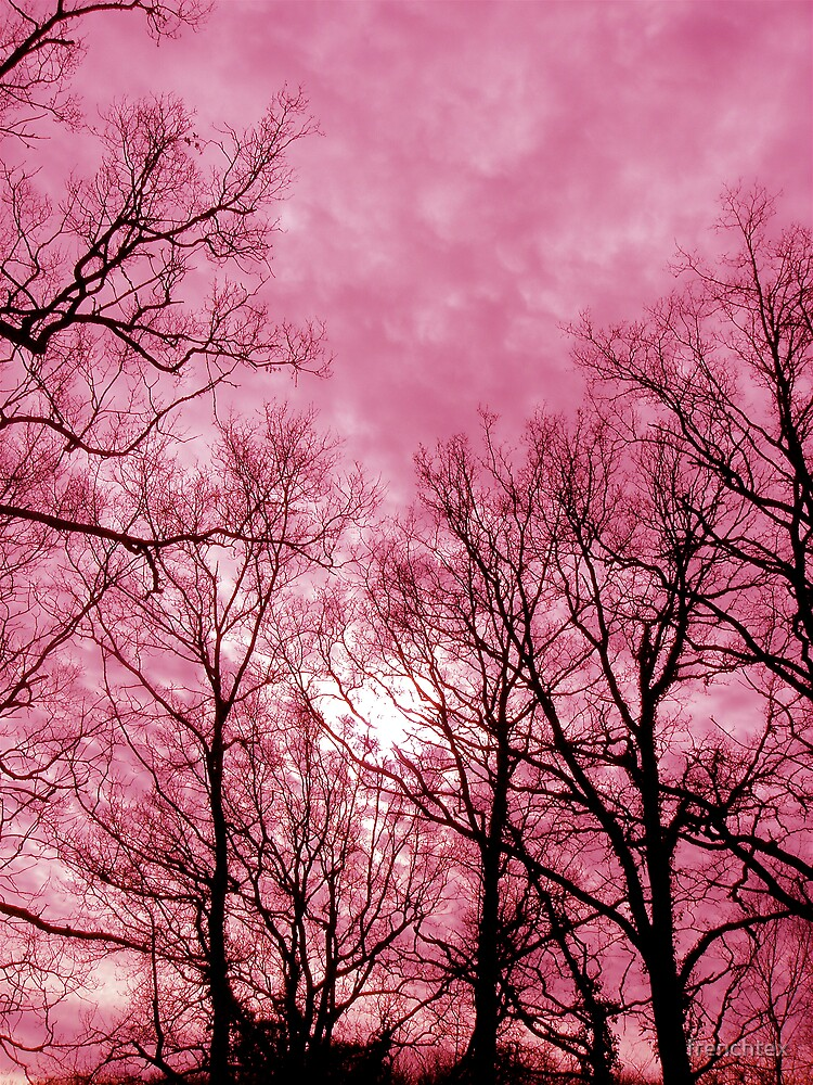 Pink Trees by frenchtex