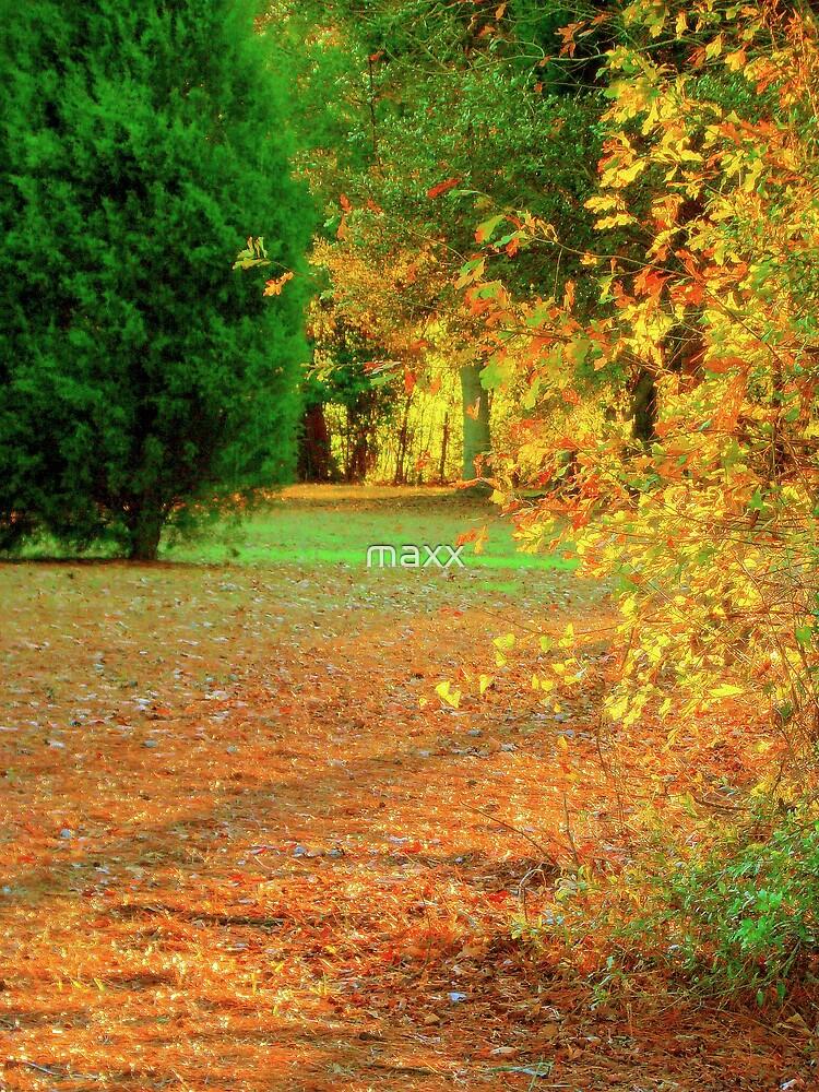 last of autumn by maxx