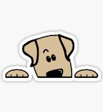 labrador retriever yellow peeking Sticker