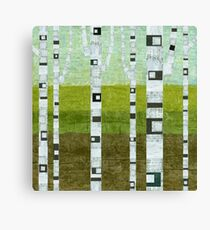 Summer Birches Canvas Print