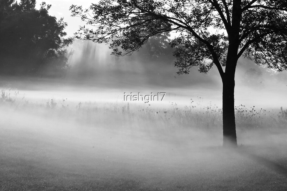 a beautiful morning by irishgirl7