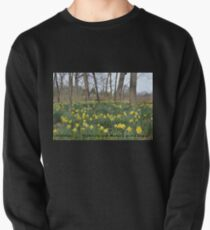 Daffodils Greeting Card Pullover