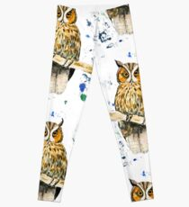 Wise Owl Leggings