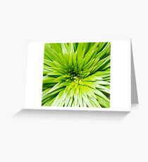 Explode Greeting Card