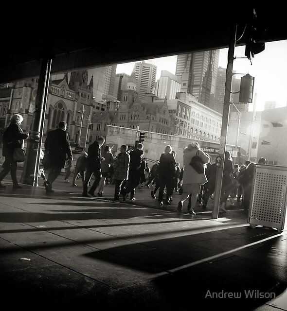 Flinders Light by Andrew Wilson