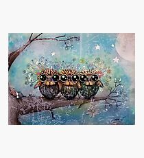 three little night owls Photographic Print